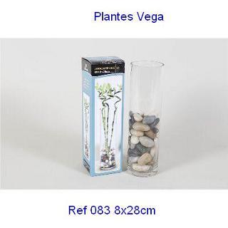 Jarron cristal 8 x 28cm plantes vega for Jarron cristal