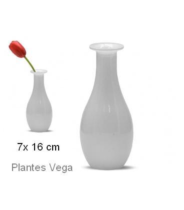 florero-cristal-forma-blanco 7x16