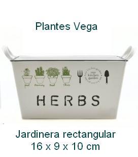 macetero-hojalata-rectangular-asas-herbs